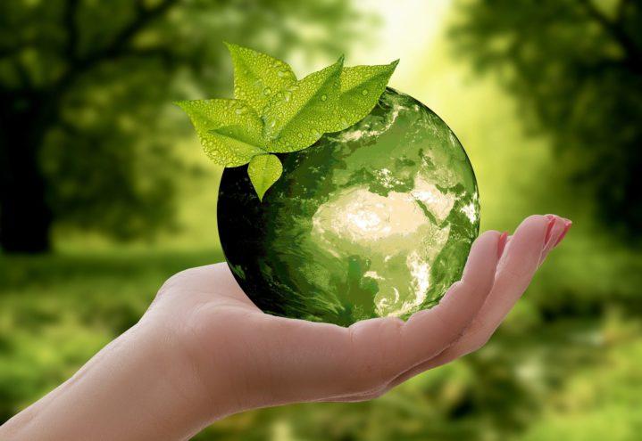 Bærekraft